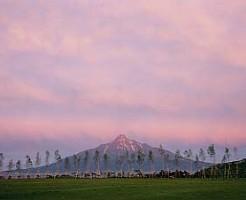 礼文島 緑が丘公園から 赤富士 04'6