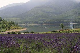 南富良野 かなやま湖