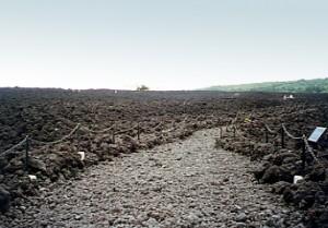 岩手山焼き走り溶岩流