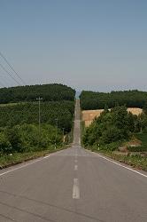 ウェーブの道