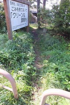 東大沼キャンプ場 サイト