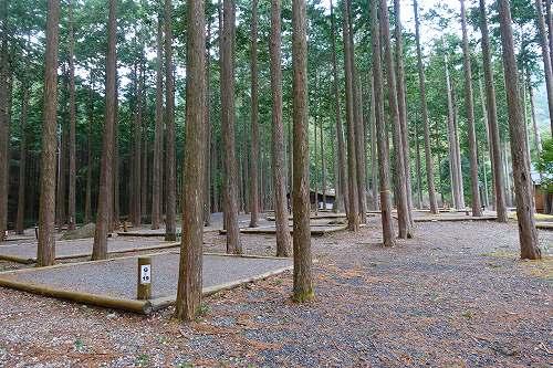 キャンプinn海山 林間サイト